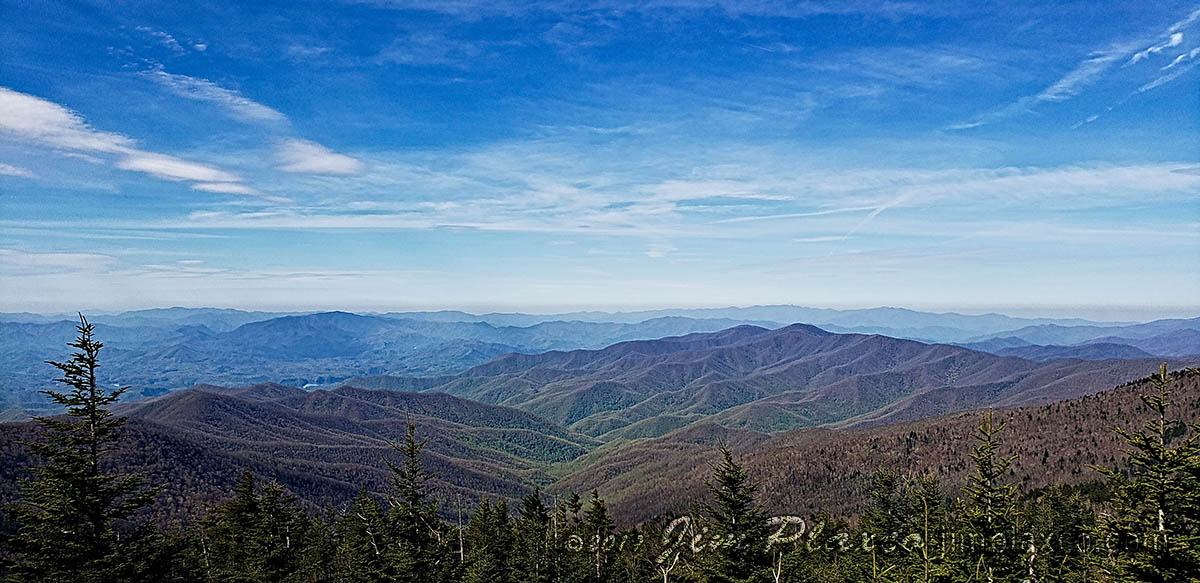 Great Smokey Mountains National Park from Andrews Bald