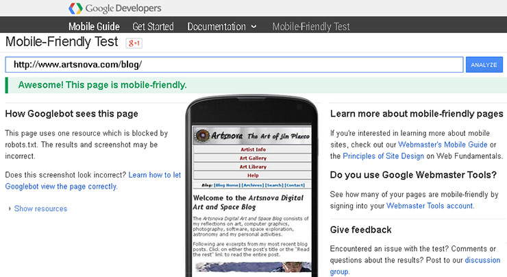 Google Developers Mobile Friendly Test Page