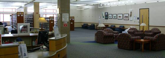 Fremont Public Library Mundelein Art Display 1st Floor