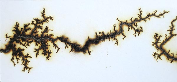 Paper + Salt Solution + Electricity = Art