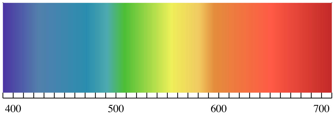 Visible Light Spectrum with wavelength in nanometers